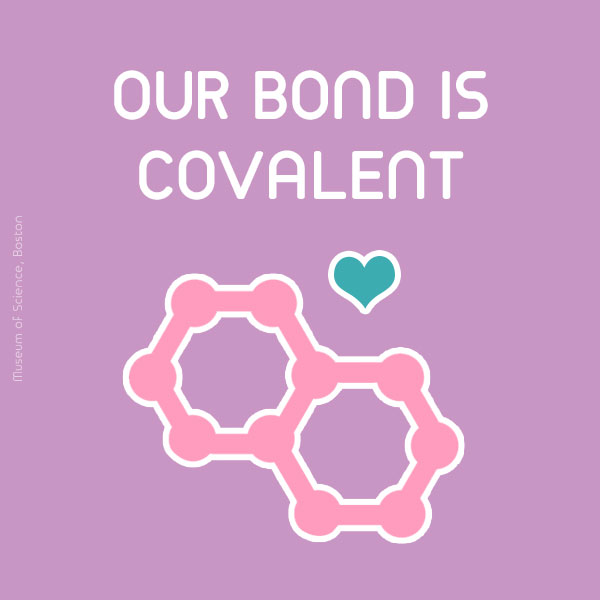 Our bond is covalent