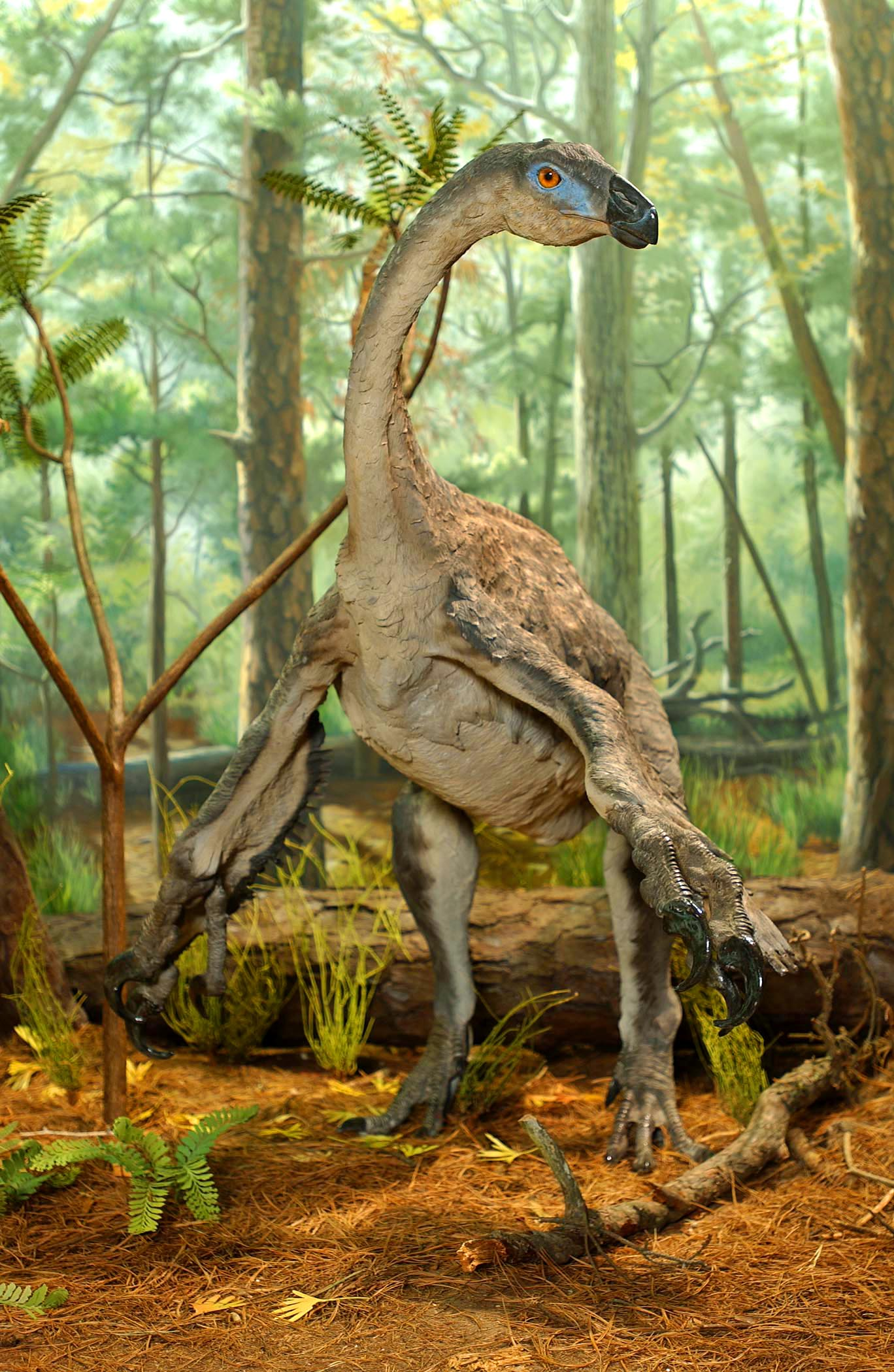 Dinosaurs: Ancient Fossils, New Discoveries | Museum of ...