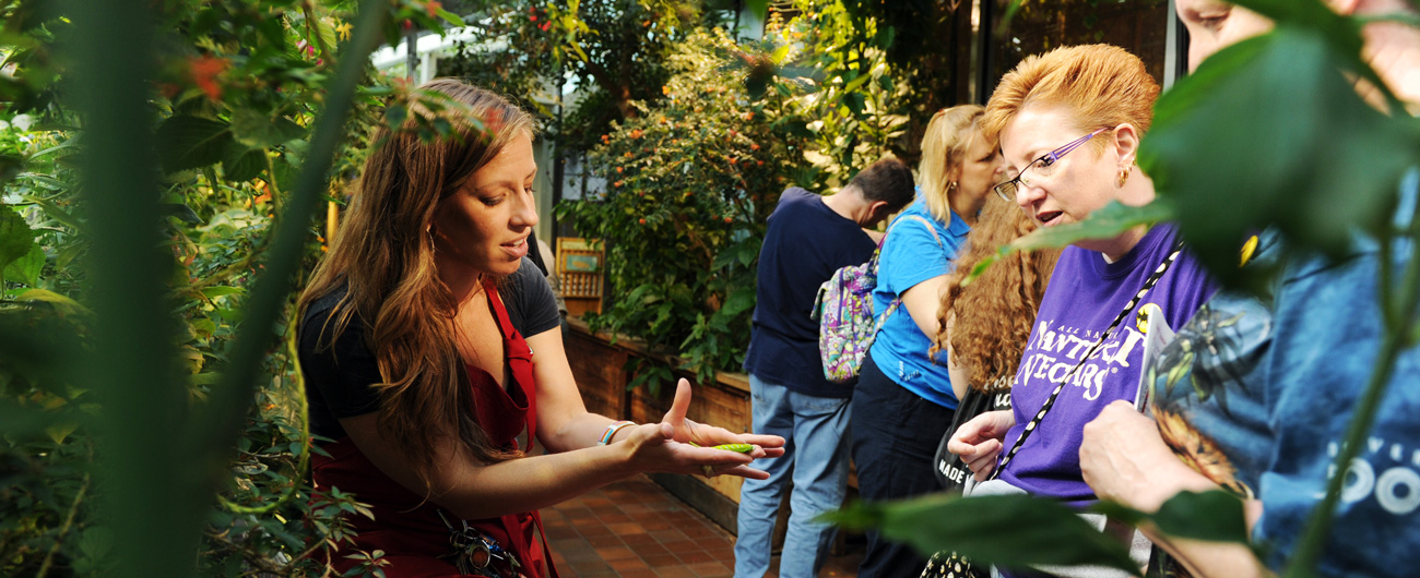 Picture of Butterfly Garden interpreter