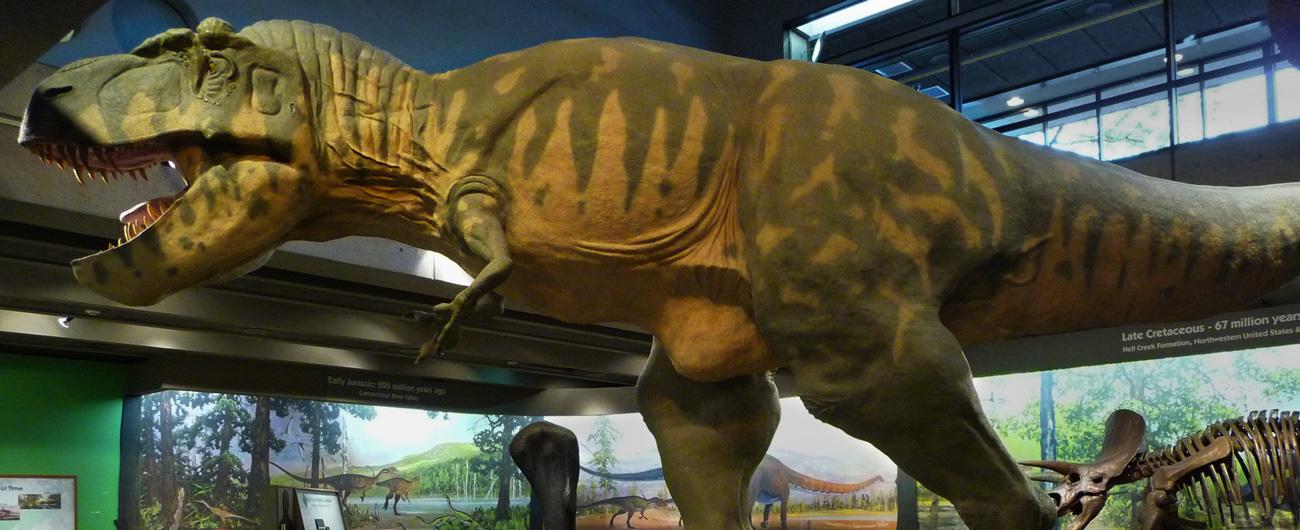 Dinosaurs: Modeling the Mesozoic exhibit