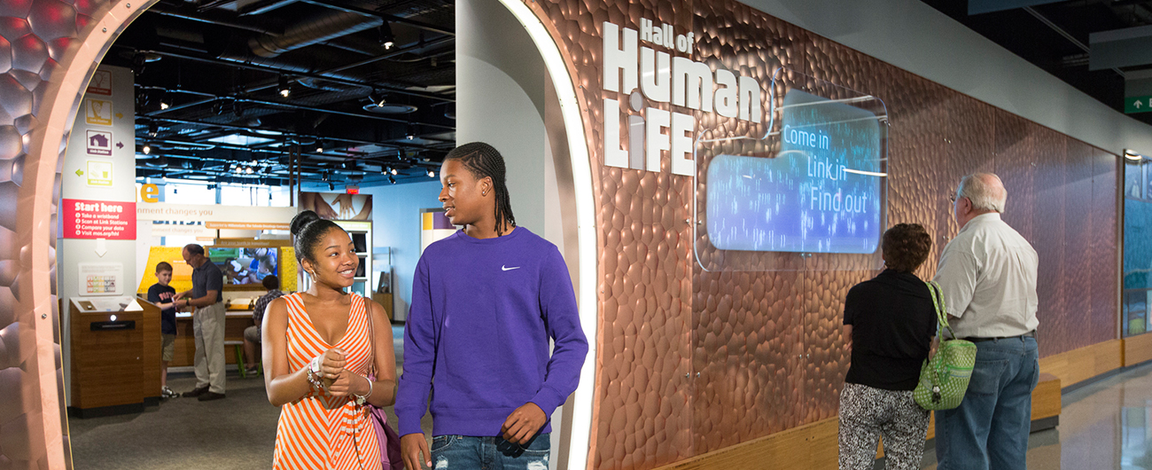Hall of Human Life | Museum of Science, Boston