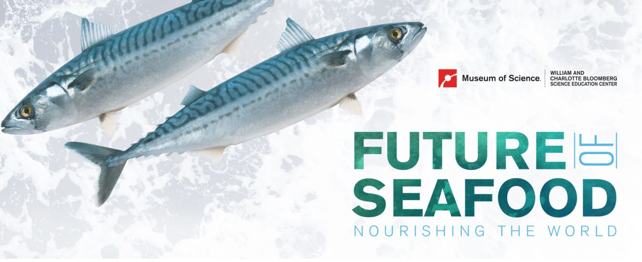 Future of Seafood: Nourishing the World | Museum of Science