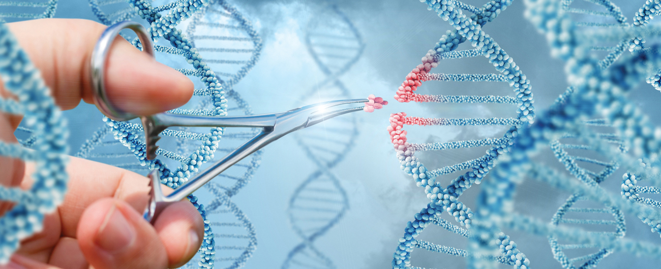 Editing Our Evolution: Rewriting the Human Genome