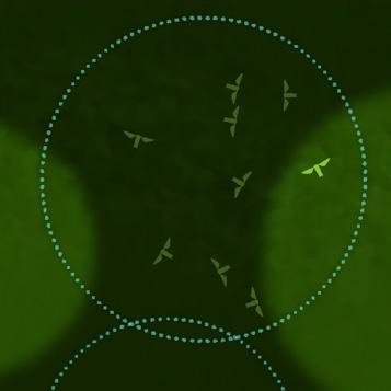Microrobotics Takes Flight picture