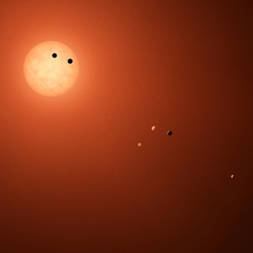 Afternoon Report: The Seven Worlds of TRAPPIST-1