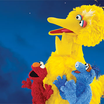 Big Bird's Adventure: One World, One Sky (Soft Light, Soft Sound) image