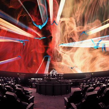 The Björk Experience