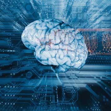 Health Fair: Brain Works