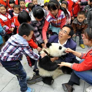 Director Zhang, head of the breeding programme at Bifengxia/Wolong, and Merry, a keeper at the breeding centre,  with a baby panda on a visit to a local school in Wolong town.