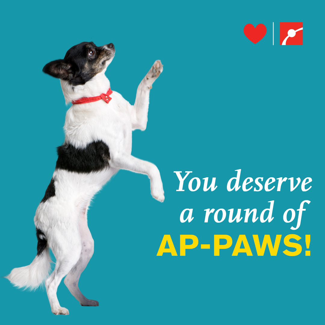 You deserve a round of AP-PAWS!