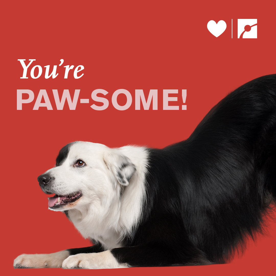 You're PAW-SOME!