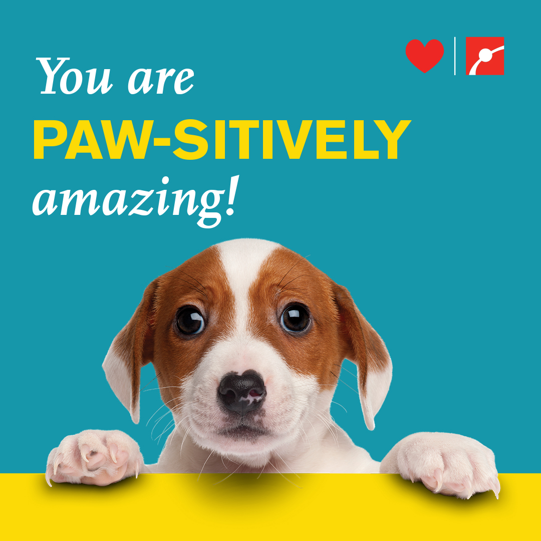 You are PAW-SITIVELY amazing!