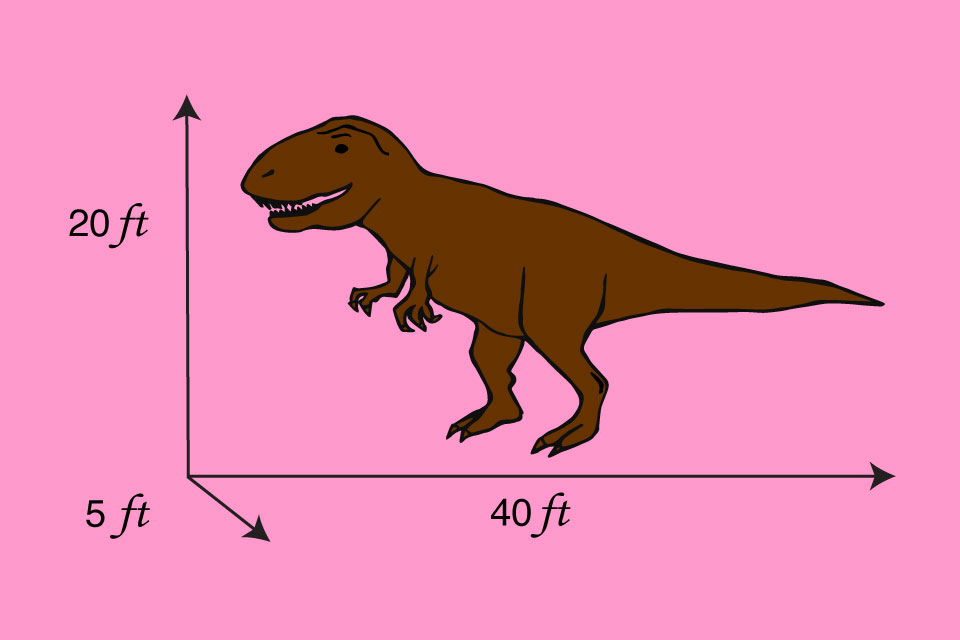 Diagram showing the dimensions of a T. rex